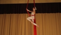 Aerial Silk Act - Aerial dance