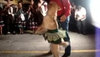Dancing Merengue Dog