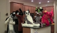 Harlem Shake furry Edition