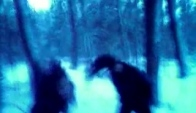 Headbanging-winter
