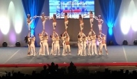 Top Gun International Level